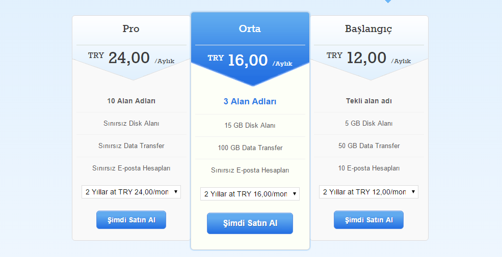 domain ve hosting