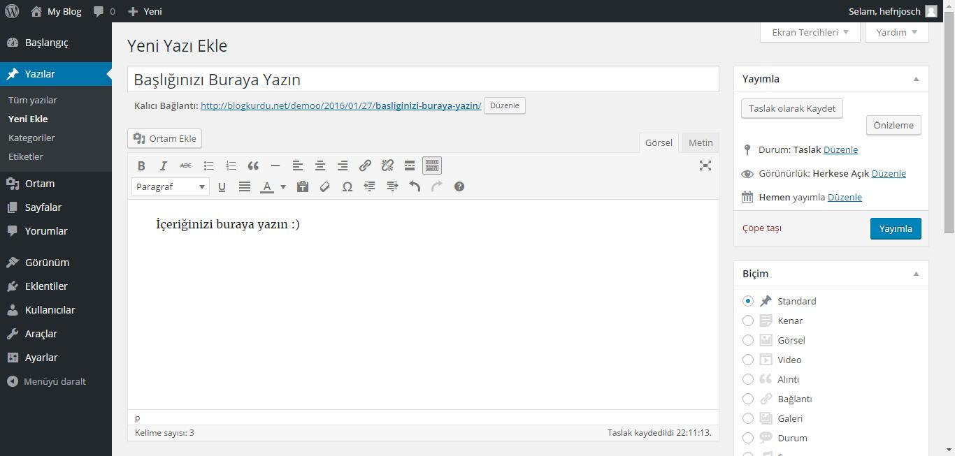 Wordpress yazı yazma