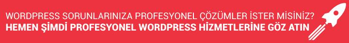 Profesyonel WordPress Hizmetleri