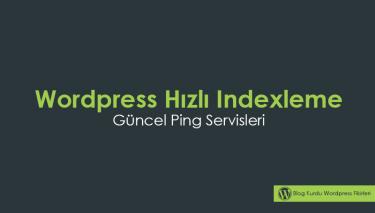 Wordpress hızlı indexleme