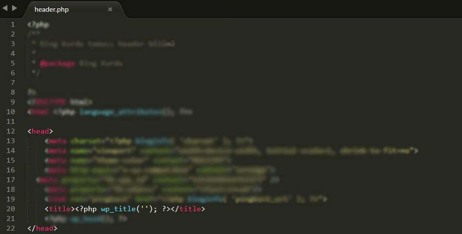 Wordpress çift başlık sorunu çözümü nasıl yapılır